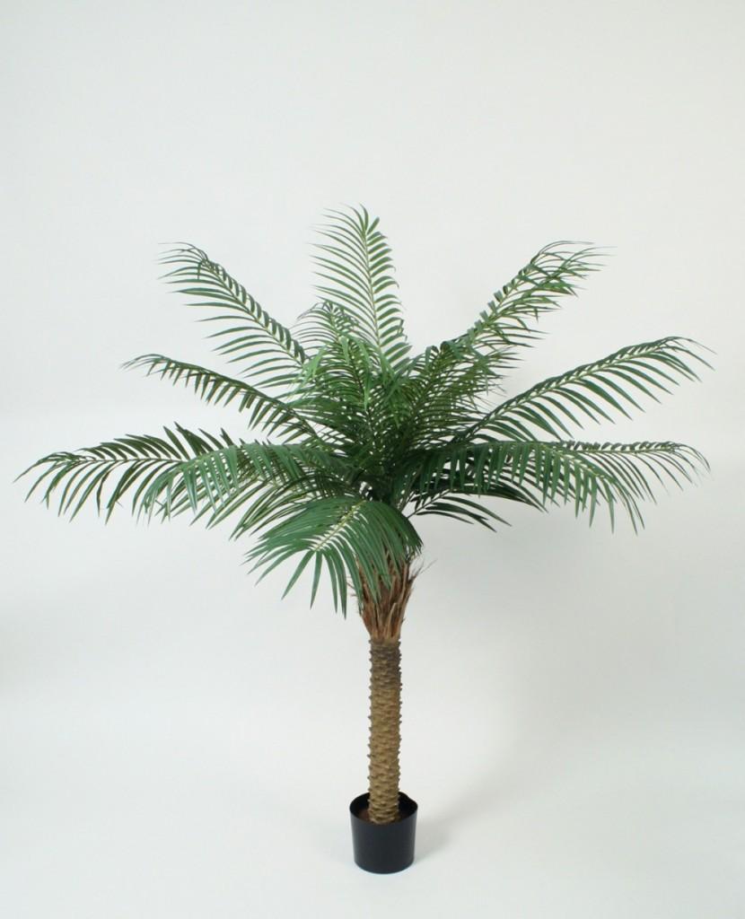 phoenix palme 150cm elises verden din leverand r av kunstige blomster kunstige planter. Black Bedroom Furniture Sets. Home Design Ideas